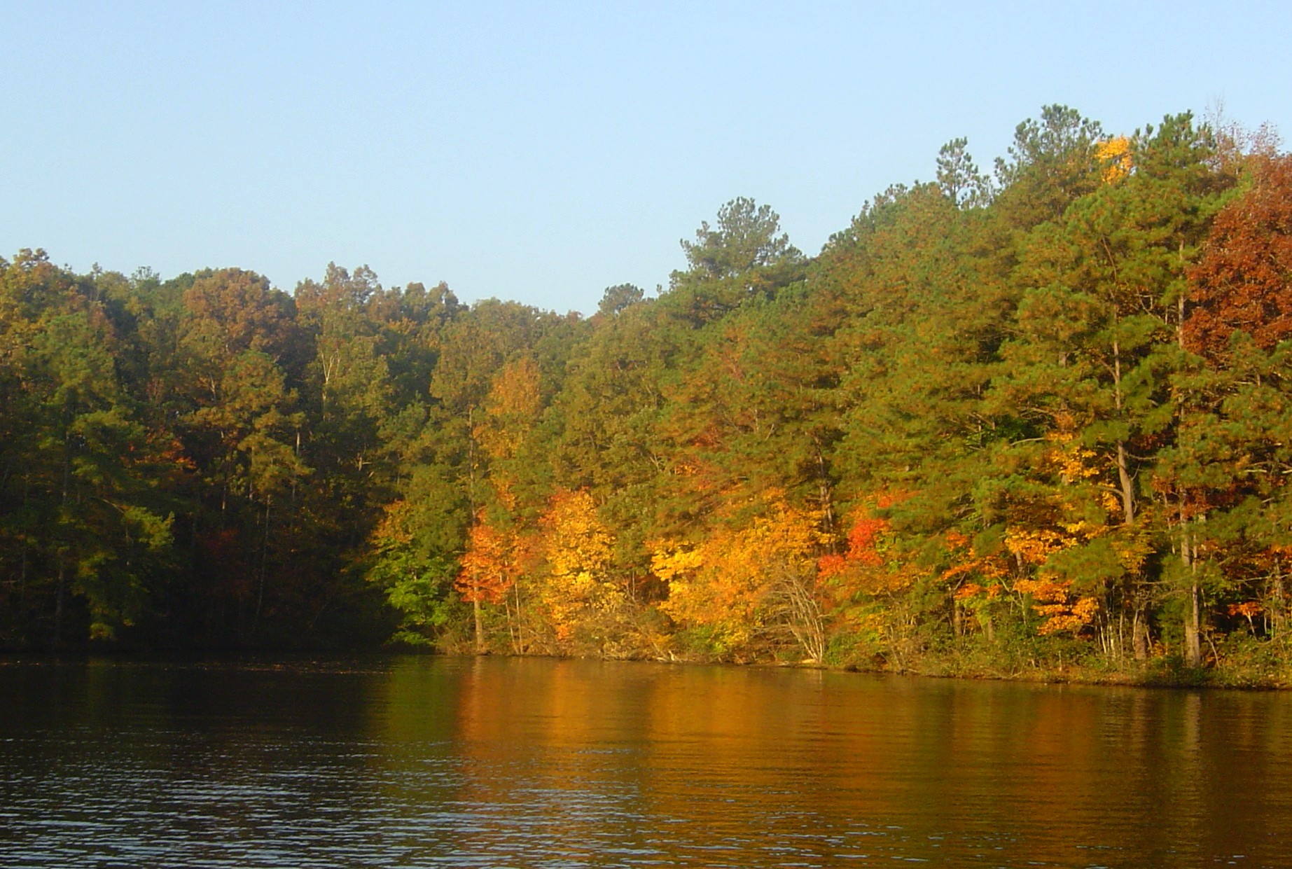Leaves changing on Lake Gaston